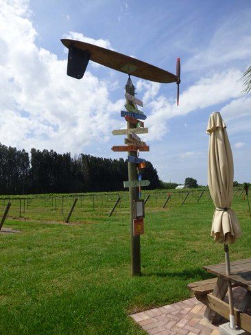 b Surf Board Wind Vane