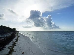 f Cloud