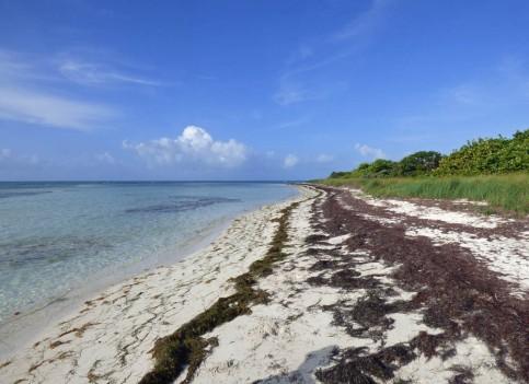 f Empty Beach