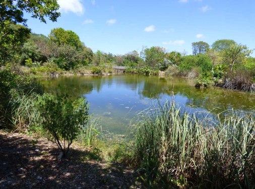 f North Side Lake 2