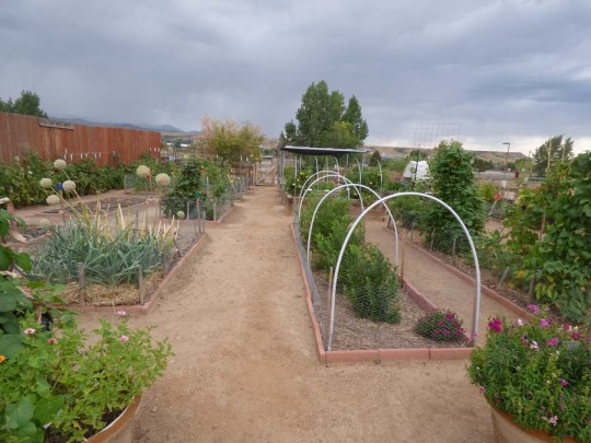 b Vegetable Garden
