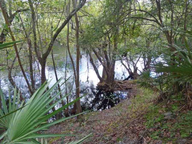 b Suwannee River