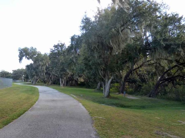 b Trail Along Live Oaks