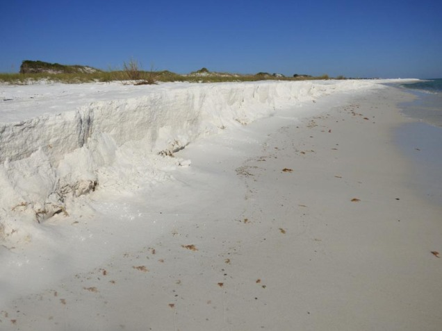 b White Cliffs of Topsail Hill Preserve