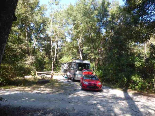 b01 Sao in O'Leno State Park