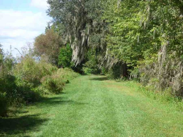 b03 Path on Dike