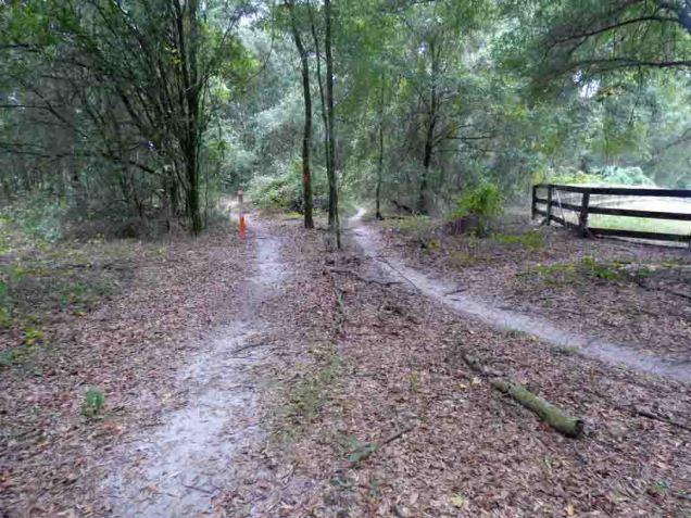 b11 Parallel Trails