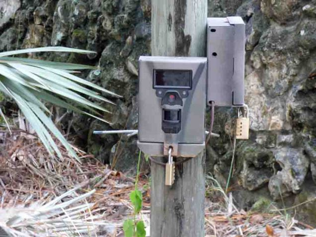 b16 Cameras at Land Bridge