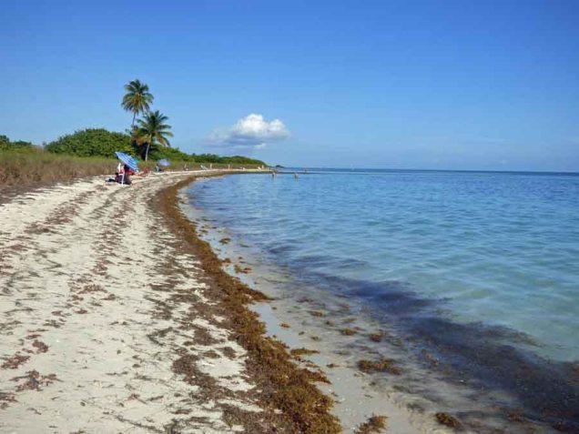 b Beach Bahia Honda