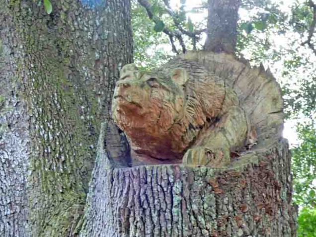 b Bear Carved in Tree