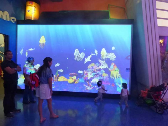 b07 Aquarium Screen