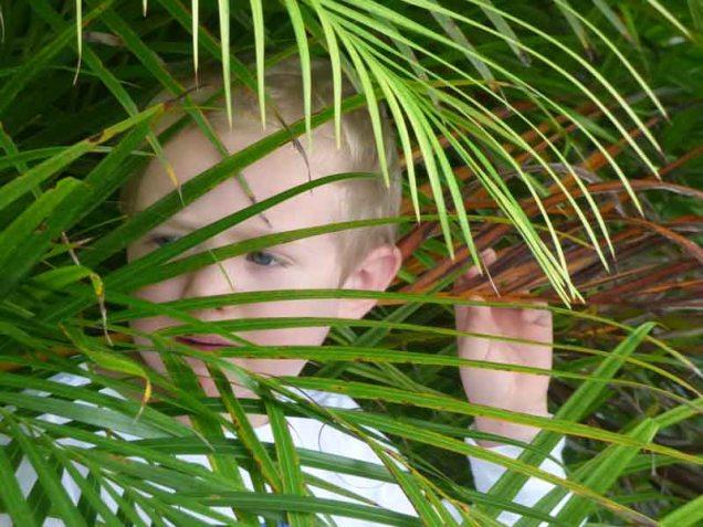 b07 Owen in Palm Frond 1