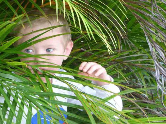 b08 Owen in Palm Frond 2