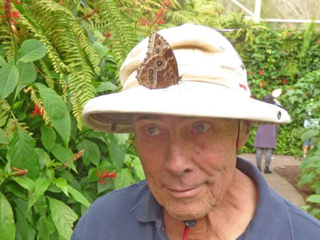b Andy Looking for Butterfly on Hat
