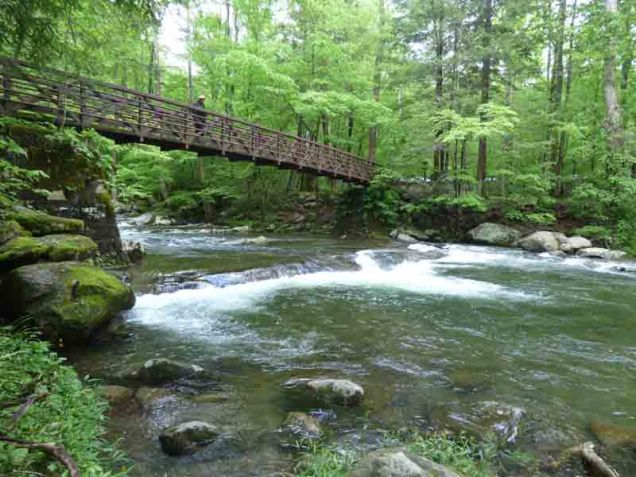 b Andy on Bridge Over Big Creek