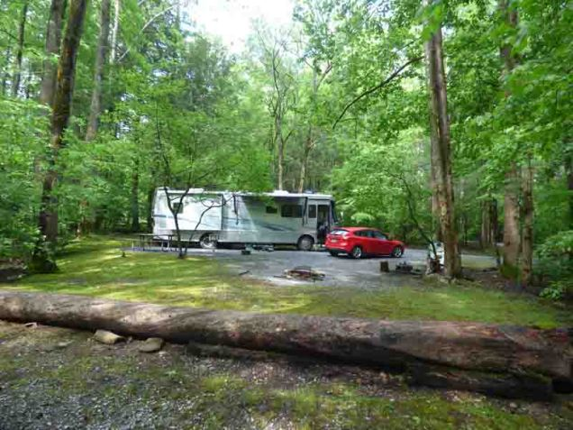 b Sao in Big Creek Host Site