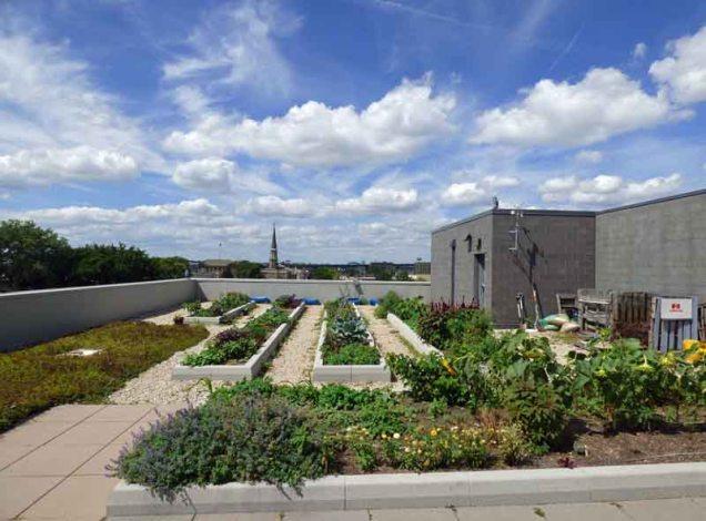 b6 Rooftop Garden