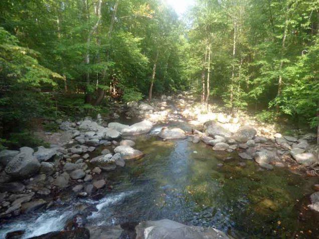 b01-big-creek-downstream