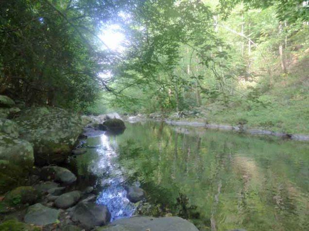 b02-swimming-hole-big-creek