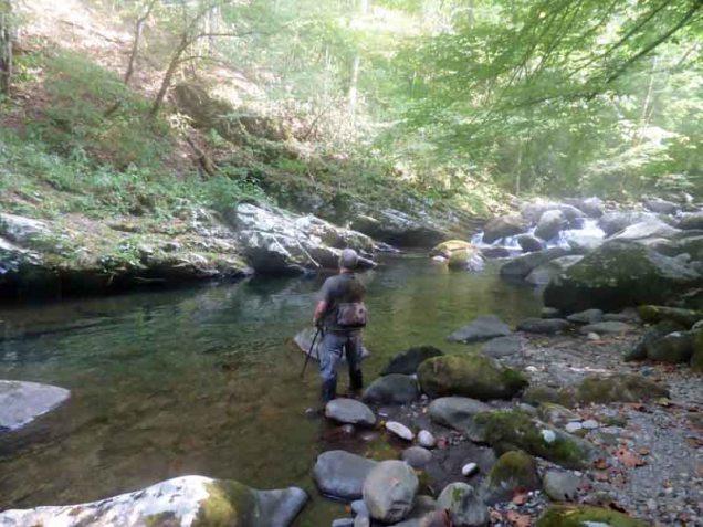 b03-fishing-in-big-creek