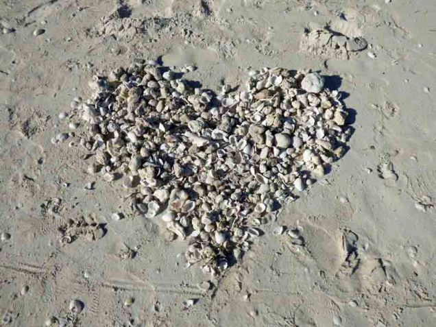 b09-shell-heart-on-sand