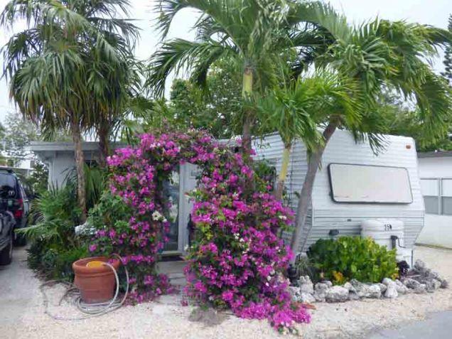 b-bougainvilla-garden-gate