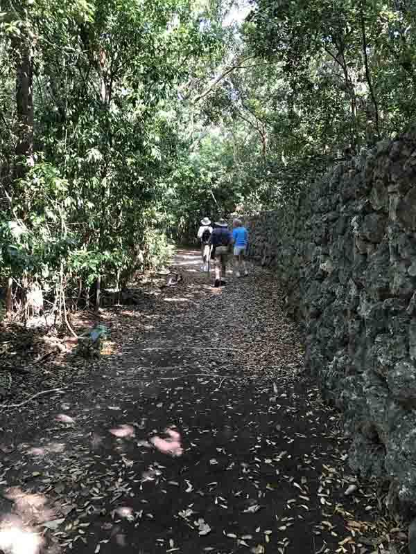 b-martin-andy-dinata-along-stone-wall
